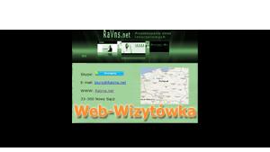 Web-Wizytówka