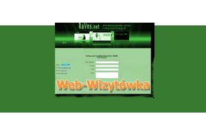 Web-Wizytówka 2