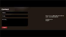 JOANA Exclusive Leather Wear - Contact (Tworzenie Stron Internetowych RaVns)